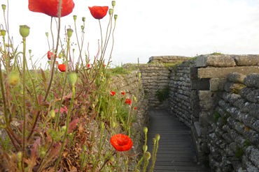 WW1 Battlefields: £399 per person